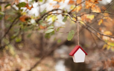 5 Reasons Clients Should House Hunt in the Fall – Realtor Magazine