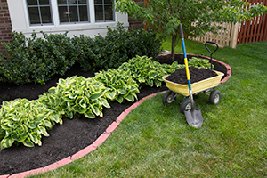Divide and Conquer Your Yard: Peparing for Spring Planting